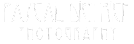 Pascal Dietrich Logo Footer